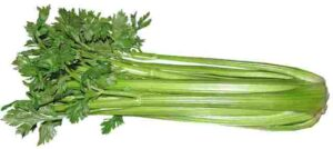 vegetables name in hindi and english | vegetables name in hindi and english with pictures | vegetables name in hindi and english both | vegetables name in hindi and english pdf | vegetables name in hindi and english | vegetables name hindi and english | vegetables name in hindi and english